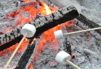 親子で焼きマシュマロ作り体験(先着50組)