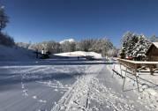 待望の天然雪が降りました!!