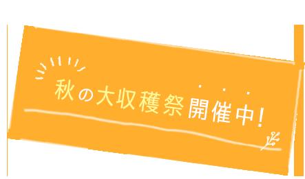 早めの夏休み・早期受付中!
